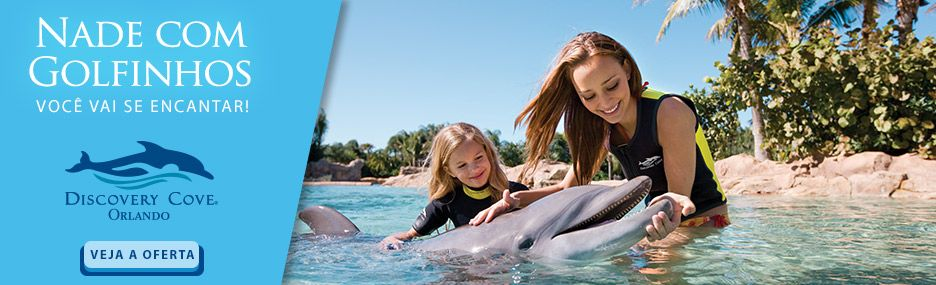 Banner Main - Discovery Cove